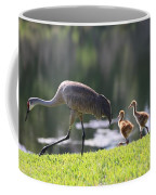 Stroll By The Pond Coffee Mug