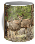 Strolling Through The Rockies Coffee Mug