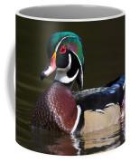 Strutting His Stuff - Wood Duck Coffee Mug