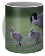 Strutting Our Stuff Coffee Mug