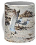 Strutting Seagull On The Beach Coffee Mug