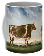 Study Of A Shorthorn Coffee Mug