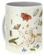 Study Of Insects And Flowers Coffee Mug by Ferdinand van Kessel