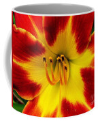 Stunning Daylily  Coffee Mug