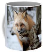 Stunning Sierra Coffee Mug