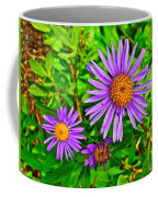 Subalpine Daisy By Vidae Falls In Crater Lake National Park-oregon  Coffee Mug