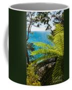 Subtropical Forest Of Abel Tasman Np In New Zealand Coffee Mug
