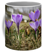 Suburban Spring Coffee Mug