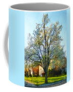 Suburbs - Late Afternoon In Spring Coffee Mug