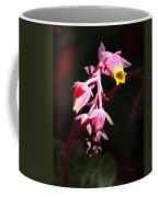 Succulent 1 Coffee Mug