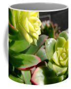 Succulent Bloom Coffee Mug