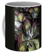 Succulent At Backbone Valley Nursery Coffee Mug
