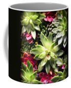 Succulent Beauties Coffee Mug