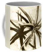 Succulent Under The Scorching Desert Sun Coffee Mug