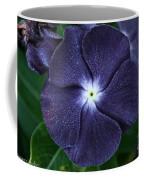 Sugar Coated Periwinkle Coffee Mug