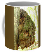 Sugarloaf Burl Coffee Mug