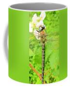 Sultry Coffee Mug