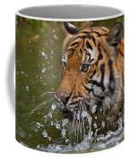 Sumatran Tiger Splashing In The Water Coffee Mug