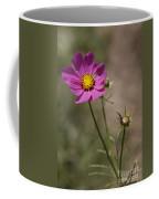Summer Cosmos Coffee Mug
