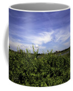 Summer In Bridgehampton Coffee Mug