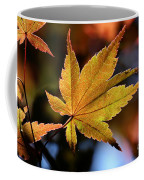 Summer Japanese Maple - 2 Coffee Mug