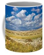 Summer Landscape Of Pag Island Coffee Mug