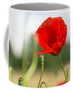 Summer Meadow With Red Poppy Coffee Mug