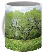 Summer Mesquite Tree Coffee Mug