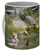 Summer Morning Dip - Elk In Yellowstone National Park - Wyoming Coffee Mug