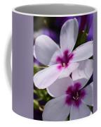 Summer Phlox Coffee Mug