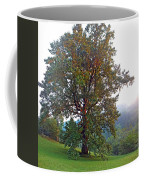 Summer Poplar Tree Filtered Coffee Mug