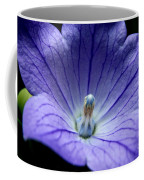Floral Summer Sensation  Coffee Mug