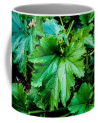 Summer Squash Leaves Coffee Mug