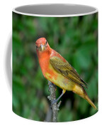 Summer Tanager Changing Color Coffee Mug