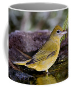 Summer Tanager Female In Water Coffee Mug