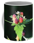 Summertime Goodness Coffee Mug