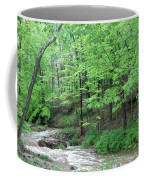 Summertime Walnut Creek Coffee Mug
