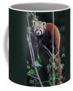 Sumo Posing In Tree Coffee Mug