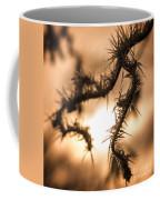 Sun And Frost Coffee Mug