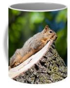 Sun Basking  Coffee Mug by Optical Playground By MP Ray