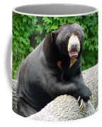 Sun Bear - 09515-1 Coffee Mug