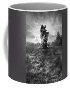 Sun Behind The Tree Coffee Mug