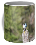 Sun Break Coffee Mug