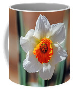 Sun Burst Coffee Mug