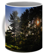 Sun Burst Through The Trees Coffee Mug