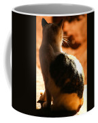 Sun Cat Coffee Mug