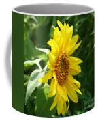 Sun Dancer  Coffee Mug