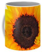 Sun Delight Coffee Mug