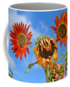 Sun Drenched In Autumn By Diana Sainz Coffee Mug