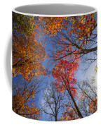 Sun In Fall Forest Canopy  Coffee Mug